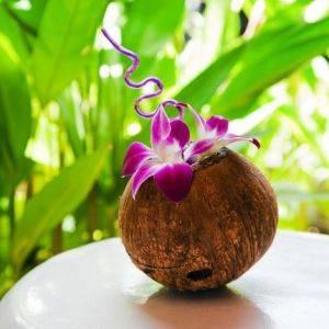 Горшок для цветов из кокоса