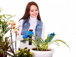 Меры предосторожности при работе с ядовитыми растениями