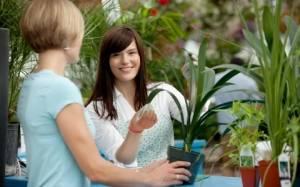 Индивидуальный подход при уходе за комнатными растениями