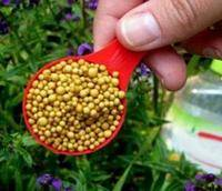 Применение фосфорных удобрений для комнатных растений