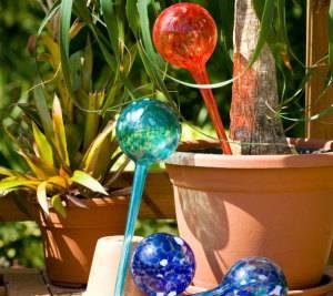 Автополив комнатных растений - красочные колбочки