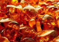 Способы применения янтарной кислоты для комнатных растений