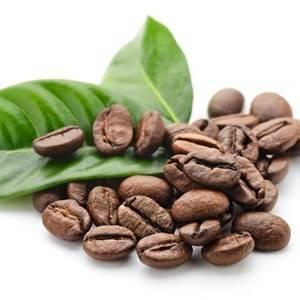 Кофейное дерево можно вырастить из зеленого кофе дома