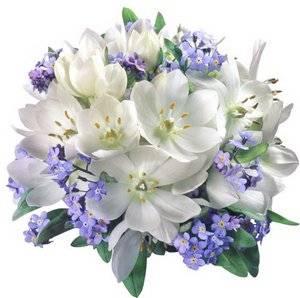 Живые цветы снятся в букетах