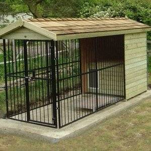 Вольер для собаки должен быть просторным