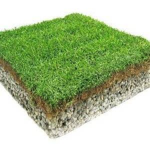 идеальный газон