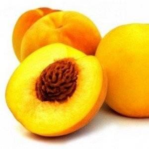 Персик из косточки можно вырастить самому