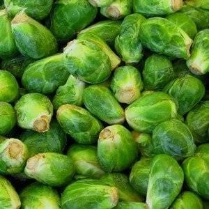 Брюссельскую капусту не сложно выращивать на грядке