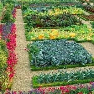 Планировать огород нужно удобно