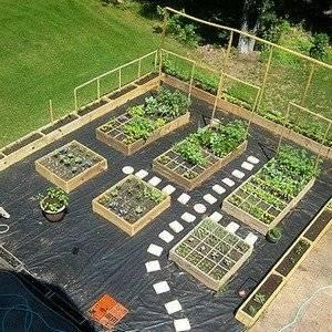 Планировать огород можно программно