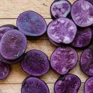 Сорт картофеля Екзотик