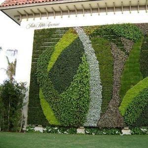 Вертикальное озеленение может украсить стену на улице