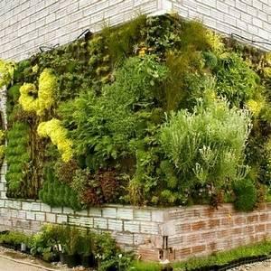 Вертикальное озеленение создает динамику ландшафта