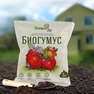 Биогумус используют для повышения плодородия почвы