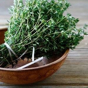 Чабрец, тимьян и богородская трава это одно и то же растение